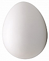 False Brooder Egg Plastic