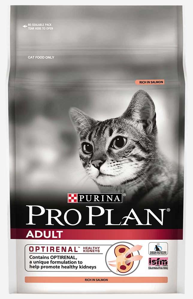 Premium Feline Food