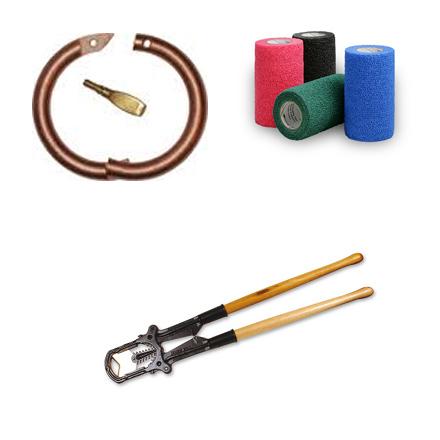 Vet Equipment & Supplies