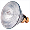 Brooder Lamp Infrared Phillip Clear 100w (Globe Only)