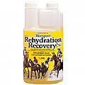 Horsport Rehydration & Recovery 1L