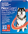 Nexgard Spectra Chewable for Dogs Extra Large 30.1 - 60kg 6 Pack