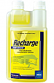 Recharge for Greyhounds 1L