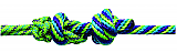 Pro Choice Rope Halter with 10' Lead Lime/Purple