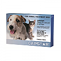 Capstar for Dogs For Cats And Small Dogs 0.5 To 11Kg (Blue) 6 Tablet