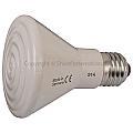Brooder Lamp Ceramic Infrared 100W (Globe Only)