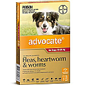 Advocate Dogs Large 10-25kg 3 Pack