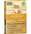 Advocate Kittens & Small Cats up to 4kg 3 Pack
