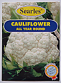 Searles Cauliflower - All Year Round