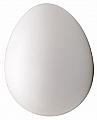 False Brooder Egg Plastic