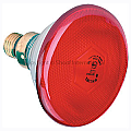 Brooder Lamp Infrared Phillip Red 100w (Globe Only)
